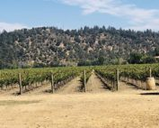 The Art of Wine Winery of the Month: Crocker & Starr