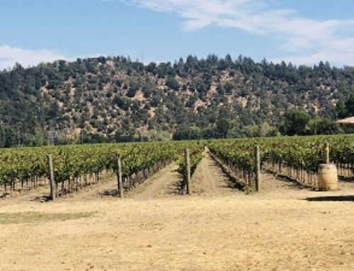 Winery of the Month: Crocker & Starr
