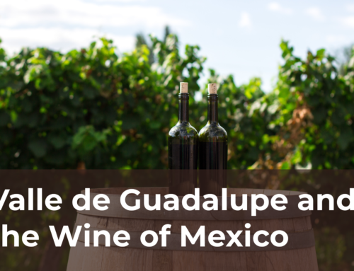 Valle de Guadalupe and the Wine of Mexico