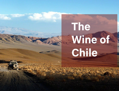 The Wine of Chile